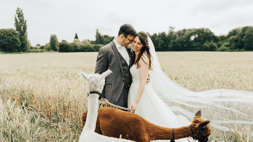 why you should hire a videographer/should you get a videographer for your wedding   Hayne House
